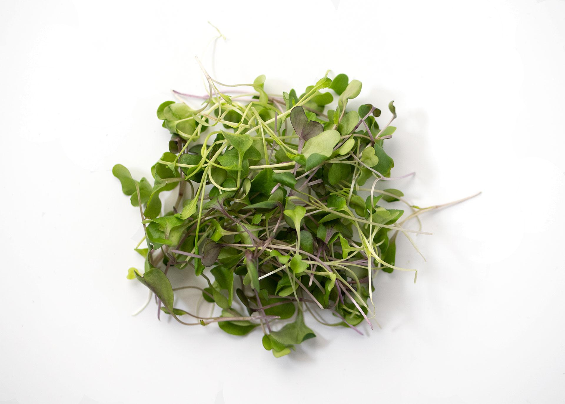 Mild Mix Microgreens Flavor Profile