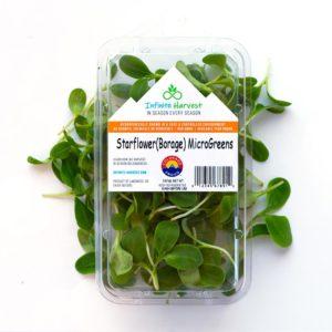 Order Starflower Microgreens Online