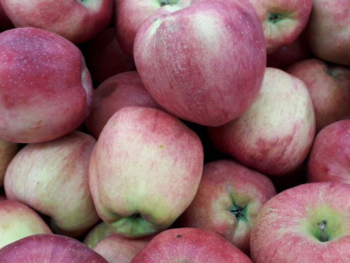 Infinite Apple Slaw With Microgreens