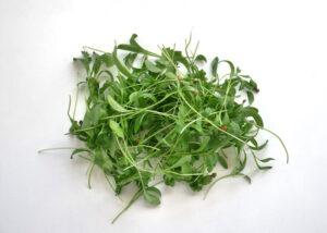 Cilantro microgreens add flavor and crunch to this microgreens recipe.